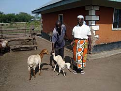 SCOREP Millicent Aduke utilized the VSL program to purchase a ewe that has now given birth to a lamb (Photo: SCI)